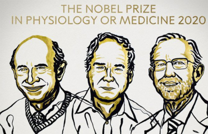 Nobel per la Medicina 2020 assegnato agli scopritori del del virus dell'epatite C, gli scienziati Harvey J. Alter, Michael Houghton e Charles M. Rice.
