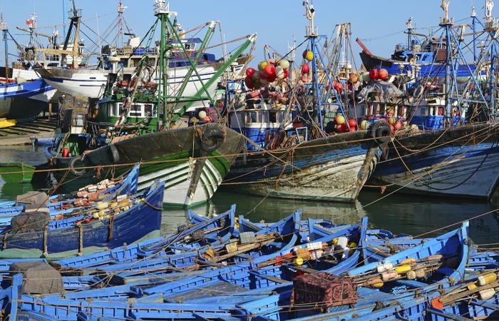 Liberate i pescatori, liberiamo l'informazione. Mazara del Vallo
